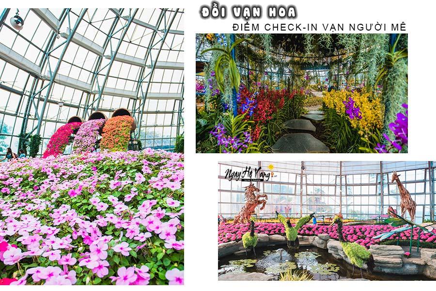 Vườn Hoa Vinwonders Nha Trang