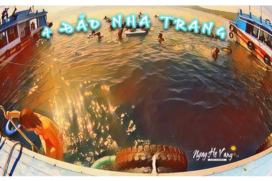 Trải nghiệm tour 4 đảo ở Nha Trang