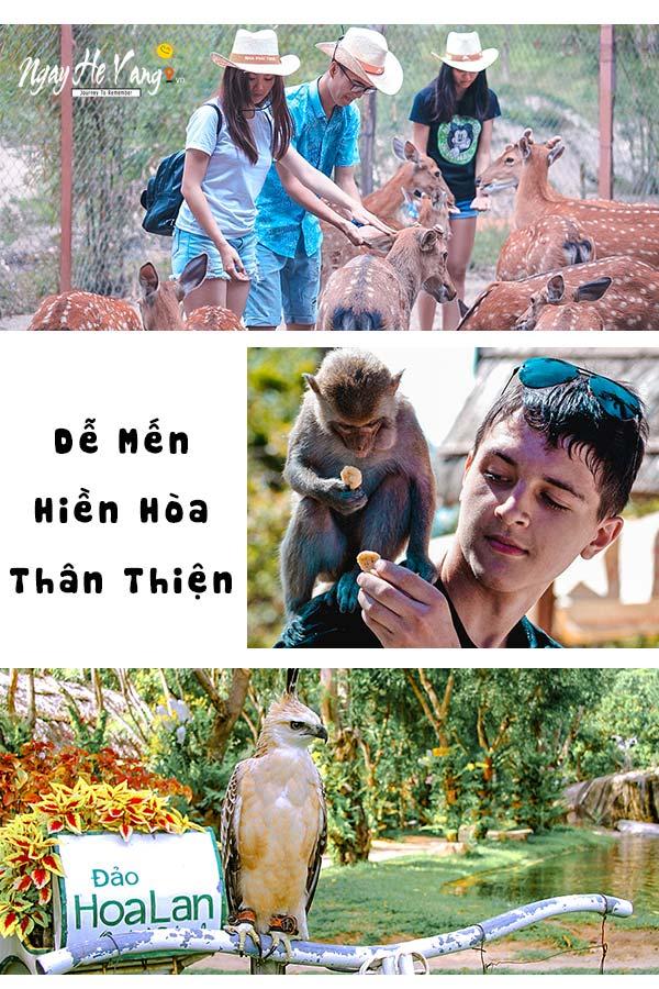 Du Ngoạn Vịnh Nha Phu Nha Trang