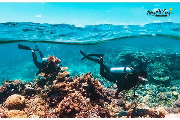 Review Lặn Biển Hòn Mun Nha Trang