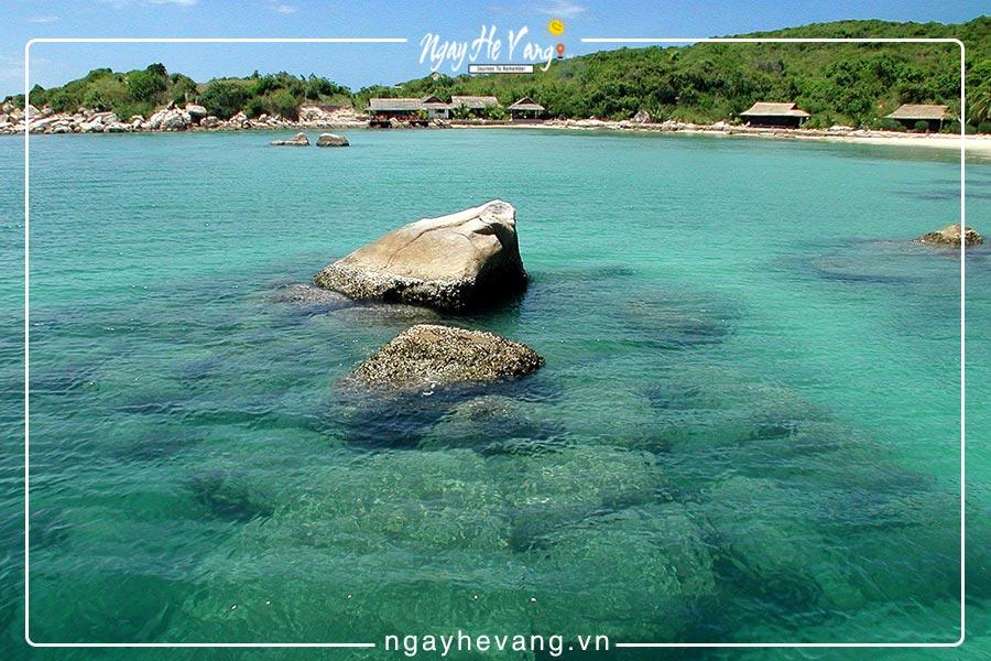 Đảo cá voi